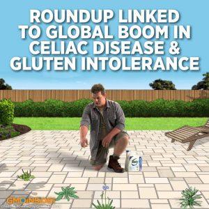 glyphosate and celiac