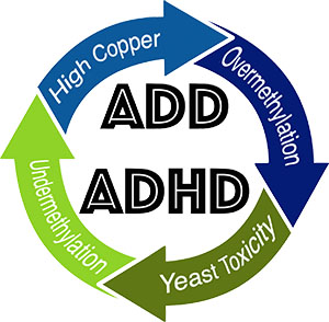 what is causing ADHD